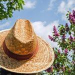 日焼け止め・子供が安全に使えるオーガニック製とは?紫外線の基礎知識