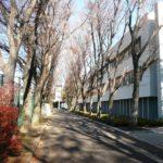 早稲田大学高等学院中学部のオンライン授業やコロナ対応は?生徒一人に10万円を給付